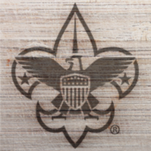 Social media logo for the Atlanta Area Council of the Boy Scouts of America